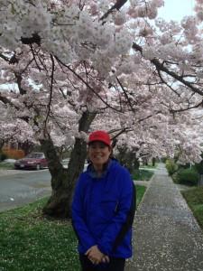 Cherry Tree Pic